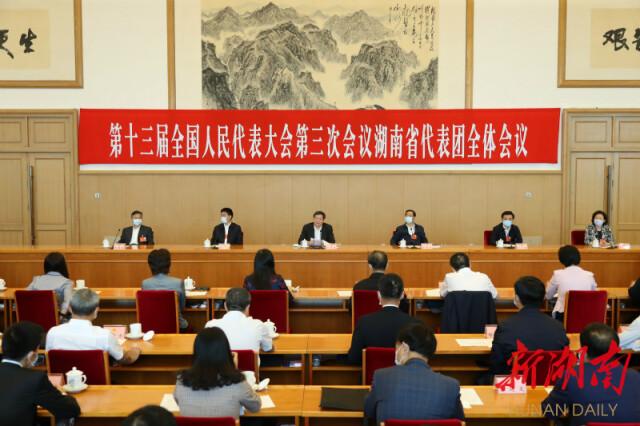 (代表团团长杜家毫主持会议并讲话。以上图片均为湖南日报·新湖南客户端记者 罗新国 摄)
