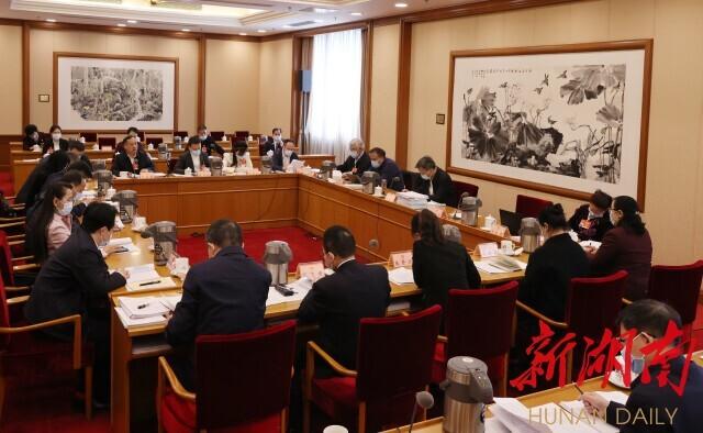 湖南代表團分組審查計劃報告和預算報告