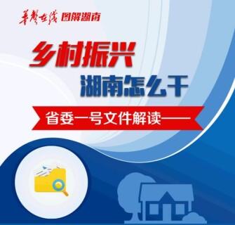 【图解】乡村振兴 省委一号文件解读