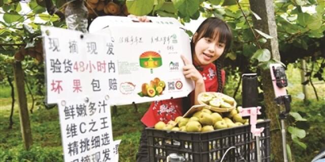 抖音网红主播在直播公益助农推销猕猴桃