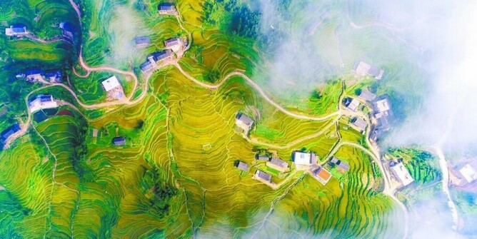 """紫鹊界梯田晋身""""全球重要农业文化遗产"""""""