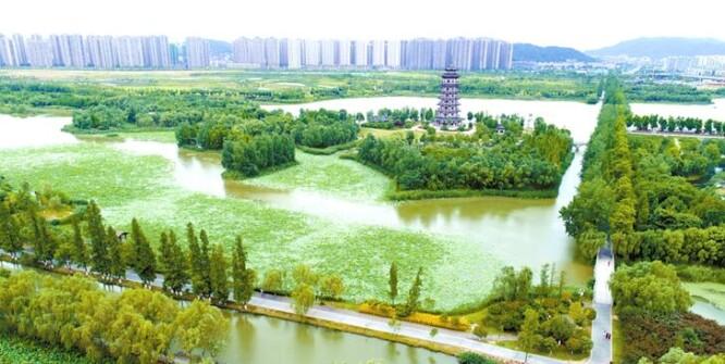 城市湿地生态美