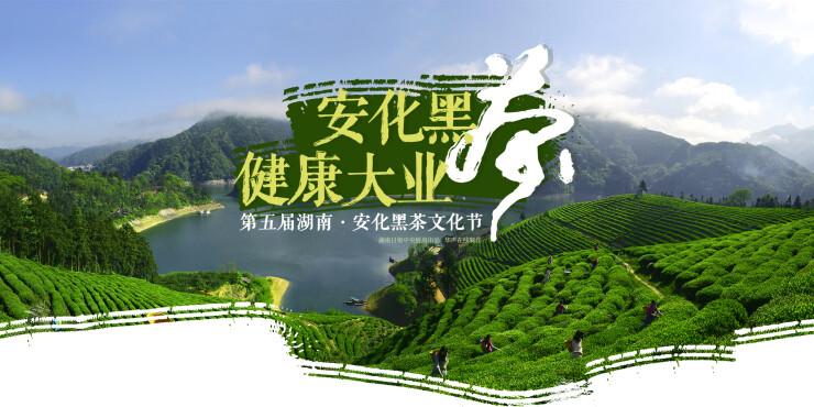 【专题】第五届湖南•安化黑茶文化节