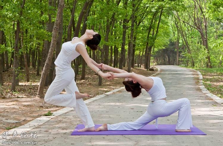 瑜伽图片艺术_