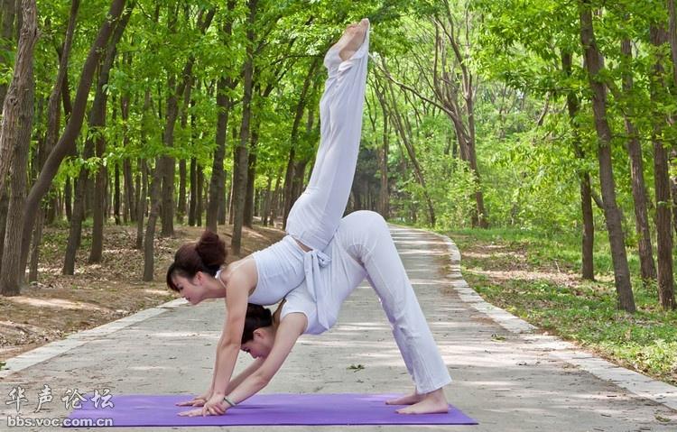 瑜伽图片艺术_瑜伽摄影图__舞蹈音乐_文化艺术_摄影图库_昵