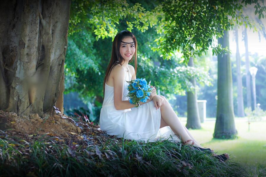 玫瑰花又开 - 春色满园 - 春色满园