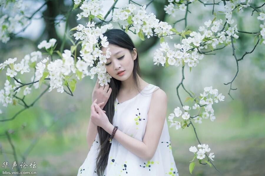 梨花树下小清新 美女人体艺术 美女诱惑