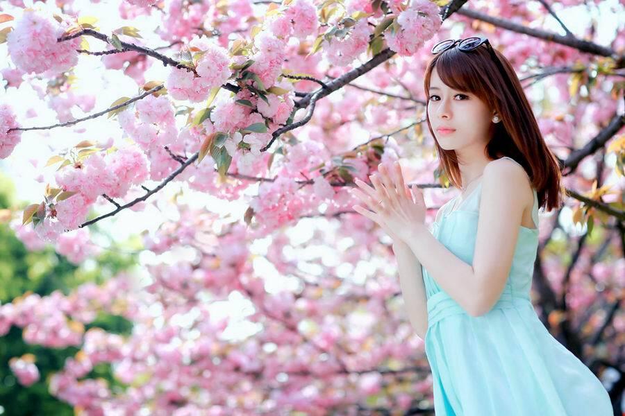 【网图共享】清纯迷人粉嫩美女樱花祭