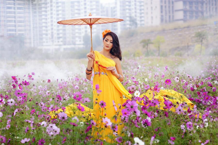 【现代时尚素材篇】格桑花开 - 浪漫人生 - .