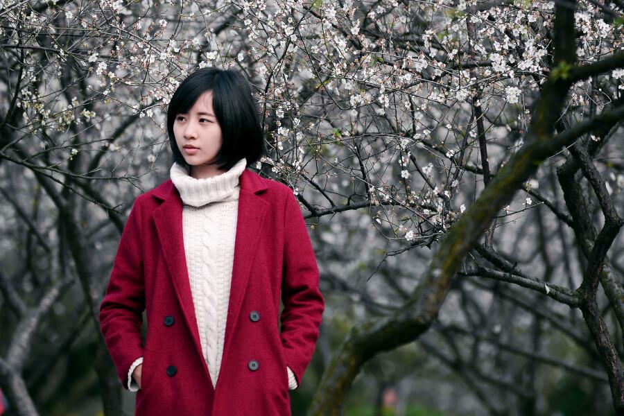 香雪梅韵 - 春色满园 - 春色满园