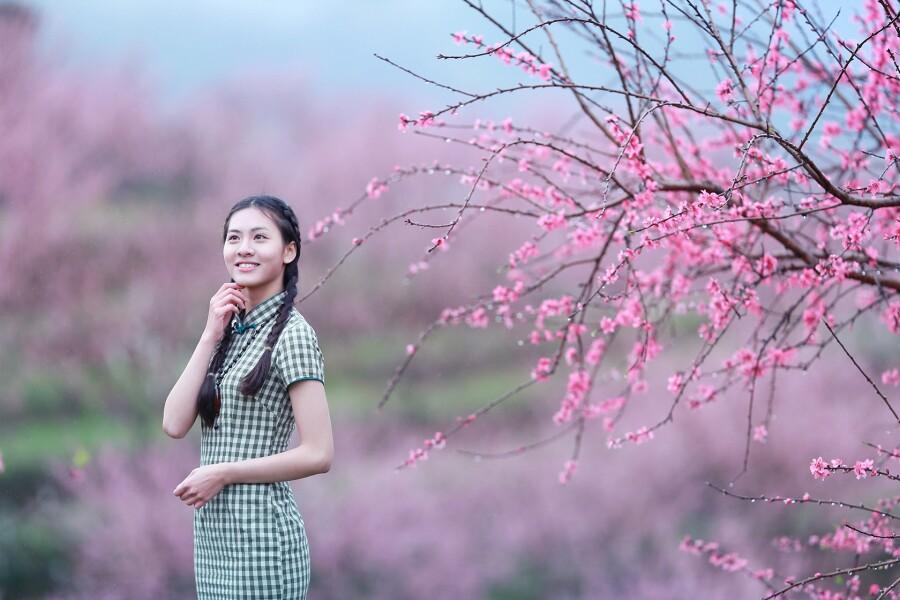 桃花红杏花白- 春色满园 - 春色满园