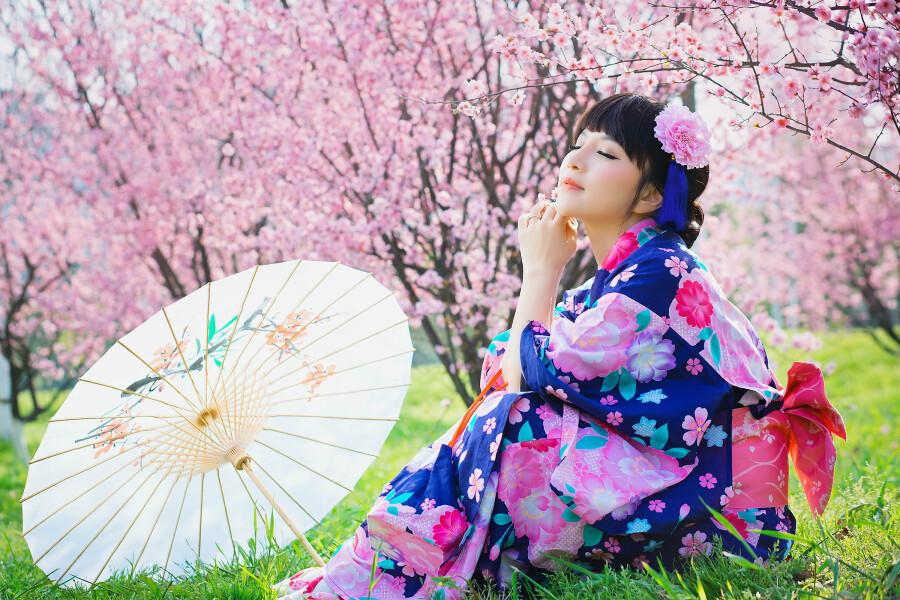 2015年03月29日 - 香雪若兰 - 香雪若兰的博客