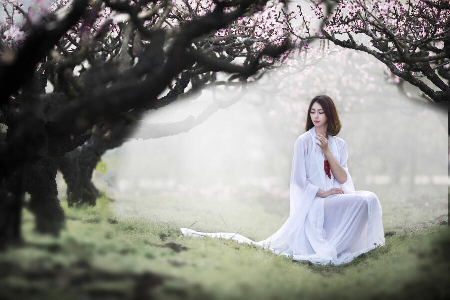 春暖花开 - 春色满园 - 春色满园
