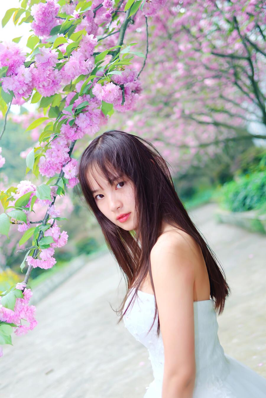 【美圖共享】◆ 穿越樱花林