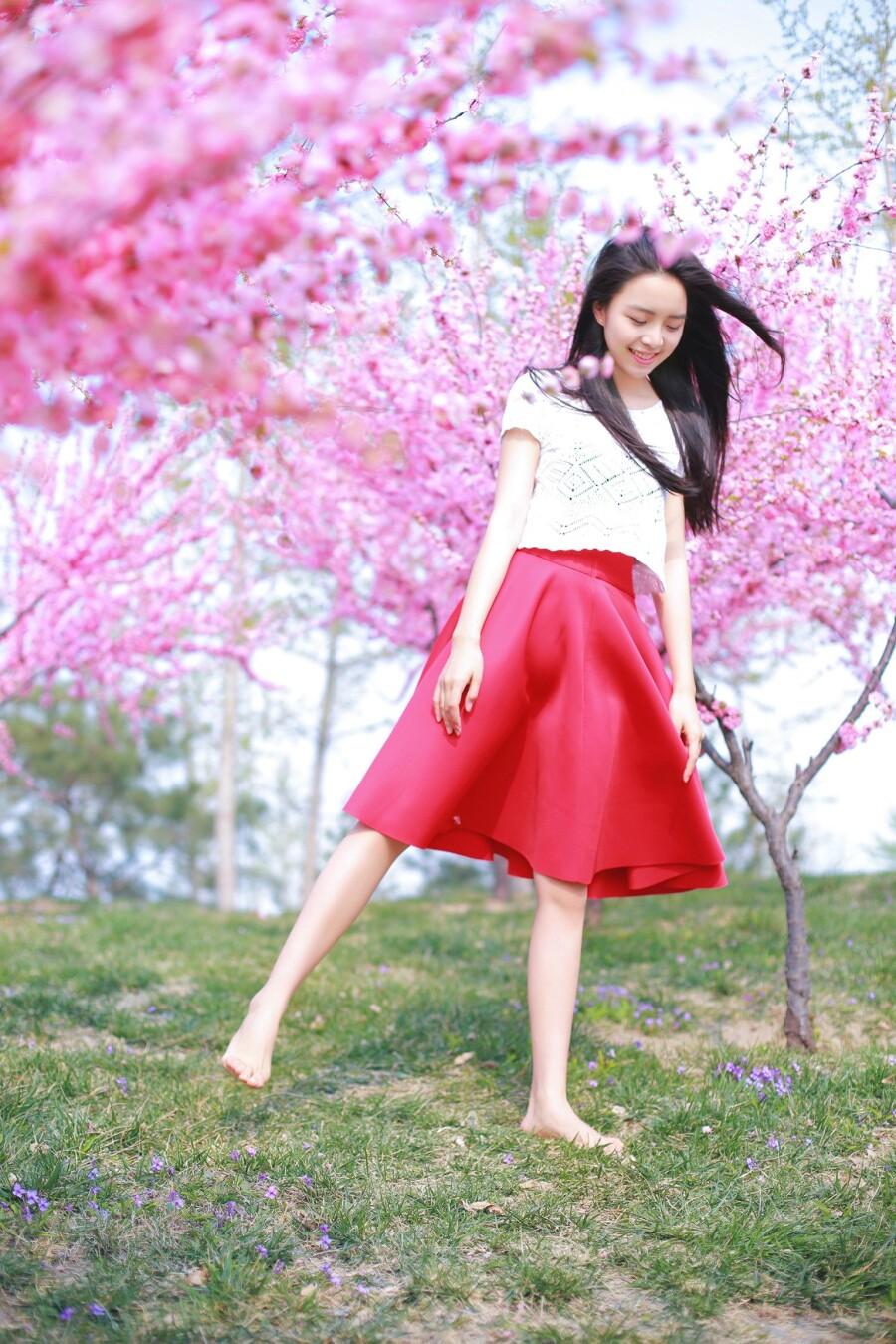 桃花开了 - 春色满园 - 春色满园