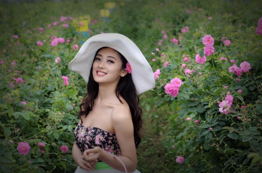 梦幻玫瑰园 - 春色满园 - 春色满园
