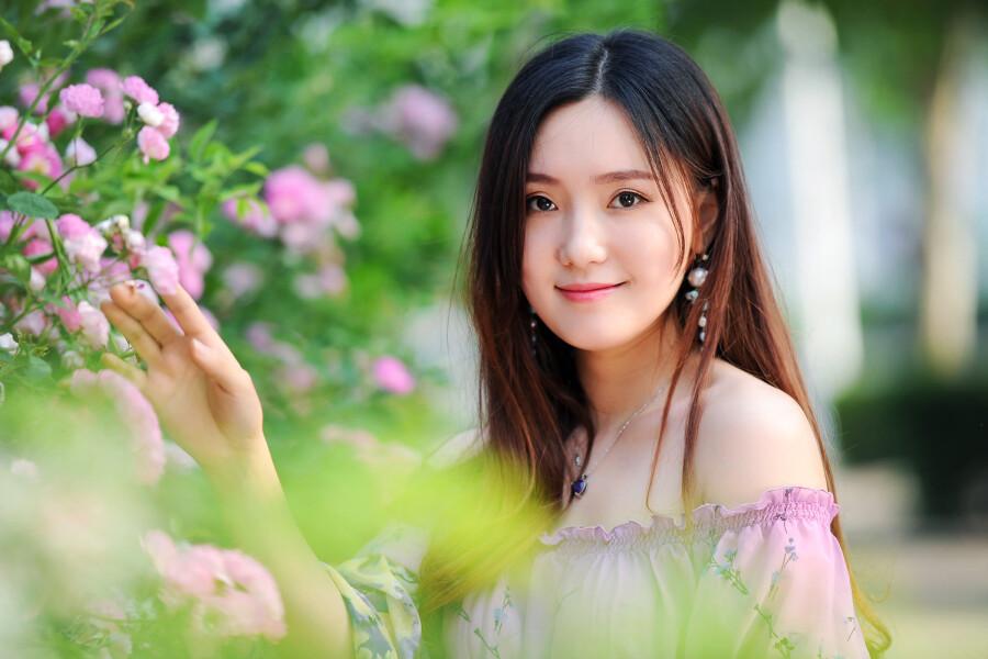 【现代时尚素材篇】蔷薇花开 - 浪漫人生 - .